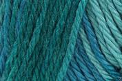 Caron Simply Soft Ombre Acrylic Aran Knitting Wool Yarn 113.4g -8701 Teal Zeal