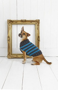 Stylecraft Pets Striped Dog Coat Life Knitting Pattern 9179 Chunky