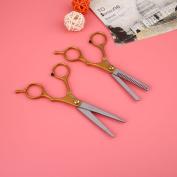 Msmask Titanium Salon Hair Cutting Thinning Hair Scissors Shears Set Hairdressing Tools