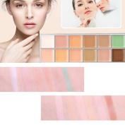 MeineBeauty 12 Colours Cosmetic Camouflage Concealer Palette Face Makeup Face Cream Concealer Palette