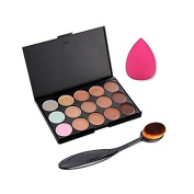 Vikenner 15 Shades Colour Makeup Concealer Contour Palette Kit Cosmetic Set + Curve Powder Foundation Make up Brush + Water Sponge Puff