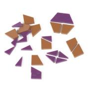 EAI Education Fraction Pattern Blocks