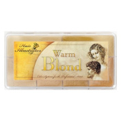 Hair Illustrator Warm Blond Hair Palette PPI Premiere Products Inc Alcohol Activated