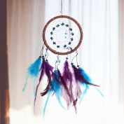 iiniim Dream Catcher, Creative Feather Handmade Ornament for Birthday Party Wedding Festival Home Office More Occasions And Places Colourful One Size