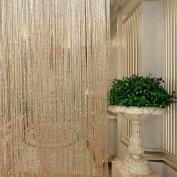 Pair String Curtain Tassle Panel Window Divider Door Fly Screen Fringe Net 100x200cm for Home Bedroom Wedding Party Garden Decoration