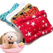 Bazaar S Pet Dog Cat Warm Soft Mat Cushion Pad Nest Bed Kennel