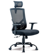 Mesh Executive Chair High Back with Adjustable Headrest Armrest and Lumbar support