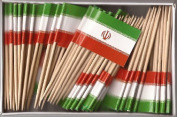 One Box Iran Toothpick Flags, 100 Small Iranian Cupcake Flag Toothpicks or Cocktail Picks