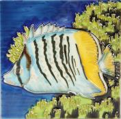 Hand Painted Art Ceramic Tile - FISH 15cm x 15cm -469