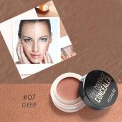 Allbesta Pro Concealer Palette Camouflage Cream Natural Wake Up Foundation Primer