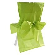 SANTEX 2975-10, Lot 10 Housses satin, vert