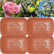 """Lot of 4 soaps 100g perfumed """"CINNAMON AND ORANGE """" made from real soap Marseille by the soap factory Le Serail, one of the last 4 soap factories realising the real soap Marseille in France since 1949"""