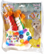 Rubie's Birthday Cake Hat - Small - Medium