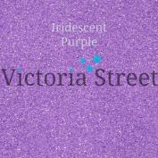 "Fine Glitter - 0.2mm / 0.008"" - Iridescent - Purple - 10 Grammes"
