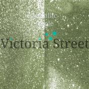 "Fine Glitter - 0.2mm / 0.008"" - Metallic - Apple - 100 Grammes"