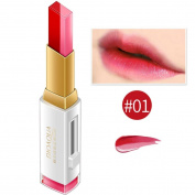 Quistal Waterproof Long Lasting Matte Lipstick Velvet Lip Make-up Mac Lipstick 3D Lipstick three-dimensional square gradient two-colour Double Diting Lip