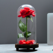 "VGIA ""Beauty and the Beast"" Artificial Silk Rose in Glass Dome on a Wooden Base Gift for Valentine's Day Anniversary Birthday"