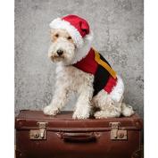 Stylecraft Pets Christmas Dog Coat Knitting Pattern 9310 DK