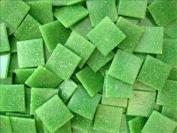 Full sheet of 225 Spring Green 20mm Vitreous Mosaic Tiles