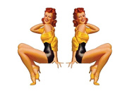 Set of 2 Remote Control (RC11) Pin Up Girl RC Aeroplane Sticker Decal