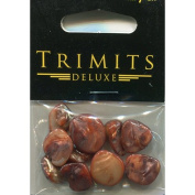 Trimits Beads - Deluxe Shells Polished - Brown Sand