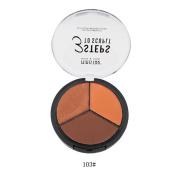 3 colours HIGHLIGHTER Shimmer Compact Highlighting Shimmering Powder + matte Concealer Contour Cream + matte cheek Blush makeup GORGEOUS creamy