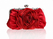 Tom Clovers Women's Clutch Red RED