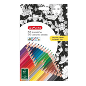 'herlitz 50013517 36 Triangular Crayons with Colour Adult – Gold/Silver
