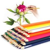 Iyowin 72 Colouring Pencils Art School Supplies Assorted colour Pencils Artist Colouring Drawing Pencils For Art Sketch / Adult Colouring Books Secret Garden/Cartoon Artwork