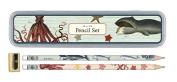 Cavallini - Tin of Pencils - Sea Life - 10 Pencils/2 Designs, & Sharpener