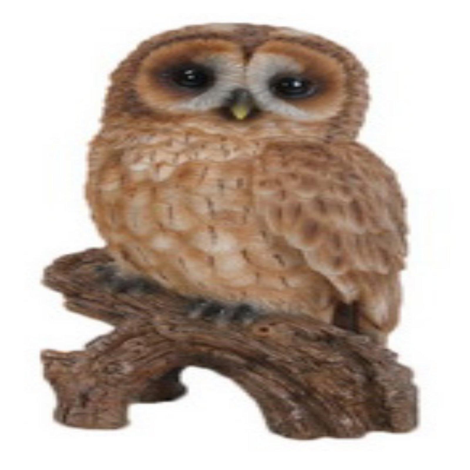 Owl Statues For Gardens Homeware: Buy Online from Fishpond.com.fj