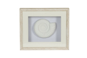 Flamant Horta Polyresin Shell Shadowbox Décor, White
