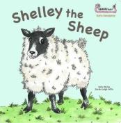 Shelley the Sheep