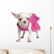 Chihuahua Wall Decal by Wallmonkeys Peel and Stick Animal Graphics (46cm W x 43cm H) WM325904