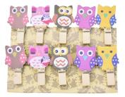 ShenTan 10 Pcs Owl Clip Paper Photo Paper Craft DIY Photo Wall