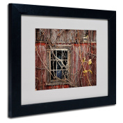 Old Barn Window Matted Framed Art by Lois Bryan with Black Frame, 28cm by 36cm