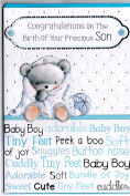 New Baby Boy Card ~ Congratulations On The Birth Of Your Precious Son ~ Baby Bear & Rattle