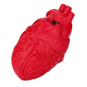 huichang Novelty Stress Ball Scary Organ Heart Tricky Squeeze Toy Stress Reliever Toy