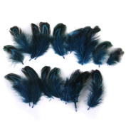 Jooks Pheasant Feathers Arts Feathers Craft For Mask Hat Ideal for Costumes Hats Home Decor 50PCs