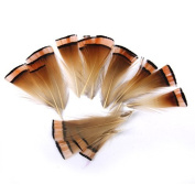 Pheasant Feathers Craft for Mask Hat 6-8cm Pack of Approx. 50pcs