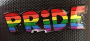 GAY PRIDE LGBT ENAMEL PIN BADGE (PB3) A GREAT GIFT