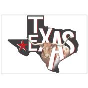 Mary Lake-Thompson Texas Cotton Flour Sack Dish Towel