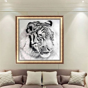 Bazaar 30cm x 30cm Black-and-white Tiger 5D Diamond Painting Embroidery DIY Craft Home Decor