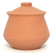 Indian Clay Yoghurt Pot - Large