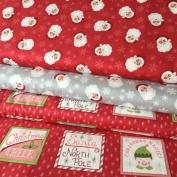 CHRISTMAS FABRIC BUNDLE - Father Christmas - Bundle - LEWFB070 - by Lewis & Irene - 100% Cotton