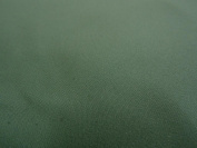 Waterproof Coated Micro fibre Fabric Material Sports Clothing Art Crafts - Sage Green
