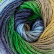 King Cole Riot Chunky Knitting Yarn 100g