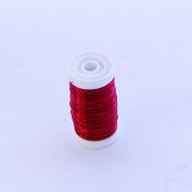 FloristryWarehouse Metallic Wire Reel 100g Red By Oasis
