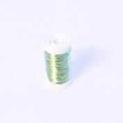 FloristryWarehouse Metallic Wire Reel 100g Mint Green By Oasis