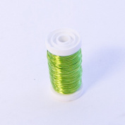 FloristryWarehouse Metallic Wire Reel 100g Lime Green By Oasis